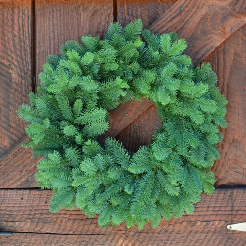 Noble Fir Classic Wreath - No Decoration